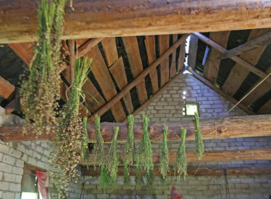 Grasses drying on the rafters.